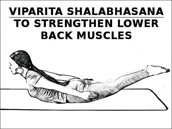 Viparita Shalabhasana Untuk Memperkuat Otot Punggung Bawah