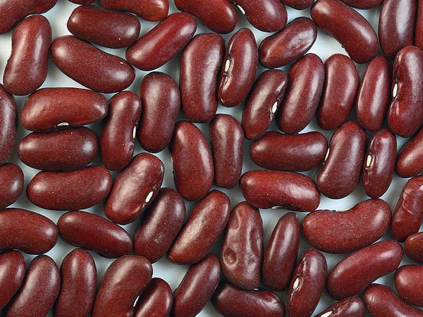 10 Sayuran Kaya Protein
