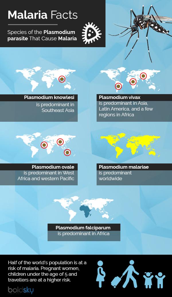 Svetovni dan malarije: vzroki, simptomi, domača zdravila in prehrana