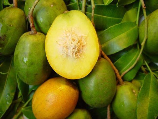 8 мање познатих здравствених благодати Амбареле, Златна јабука