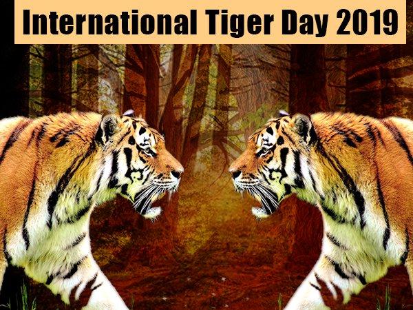 अंतर्राष्ट्रीय बाघ दिवस 2019: इतिहास और महत्व